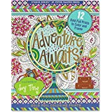 Adventure Awaits! Foiled Coloring Prints (12 frame-worthy designs) (Studio)