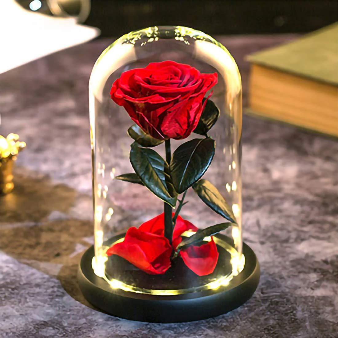 美女と野獣 赤いバラ 魅惑的な赤いシルクローズ 木の台座に落ちた花びら付き 彼女への最高の贈り物 バレンタインデー 結婚記念日 B07L2CTTQP Preserved Real Rose