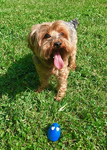 Set-of-3-small-dog-toys-with-squeaker-100-natural-rubber-latex-Lead-free-chemical-free-Complies-to-same-safety-standards-as-childrens-toys-Soft-and-squeaky-Best-dog-toy-for-small-dogs