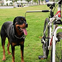 Correa para bicicleta con cordón elástico y correa retráctil ...