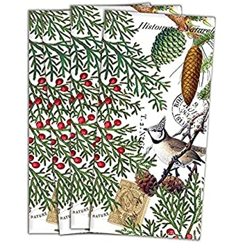 Michel Design Works FNAP257 Turkish Cotton Dinner Napkins, Spruce