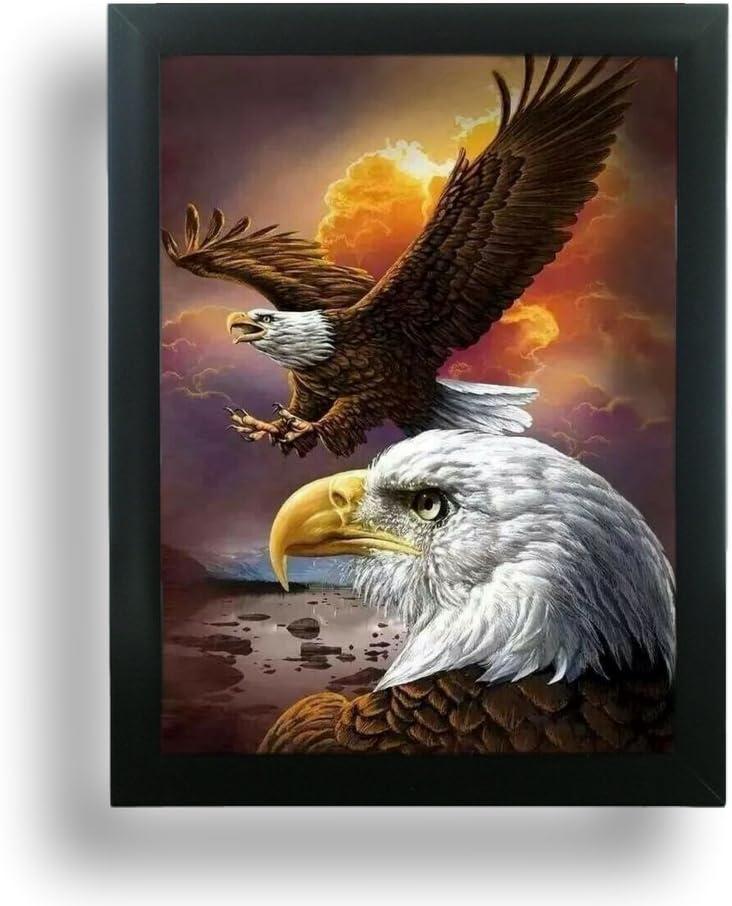 BANBERRY DESIGNS Eagle Poster - 3D Holographic Lenticular Print - Black Framed Wildlife Picture - Bald Eagles Flying Soaring