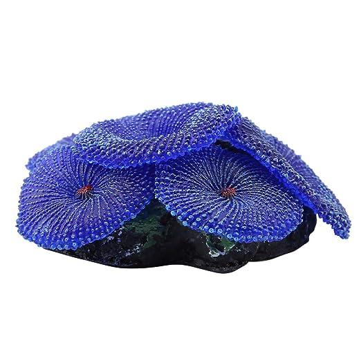 Cafopgrill Adorno de Acuario Silicona Artificial Plantas emulativas de Coral Decoraci/ón del h/ábitat Natural para el Tanque de Peces Marinos Paisaje Azul