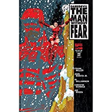 Daredevil: The Man Without Fear (1993-1994) #2 (of 5) (English Edition)