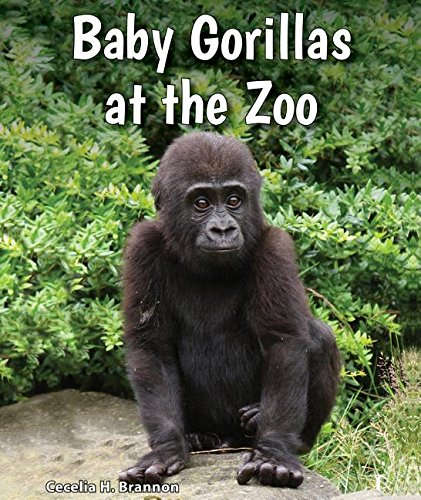 Baby Gorillas at the Zoo (All about Baby Zoo Animals) ebook