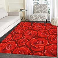 Rose Rugs for Bedroom Vivid Red Roses Rain Water Drops Graphic Dewy Meadows Inspired Romantic Pattern Circle Rugs for Living Room 2x3 Ruby Vermilion