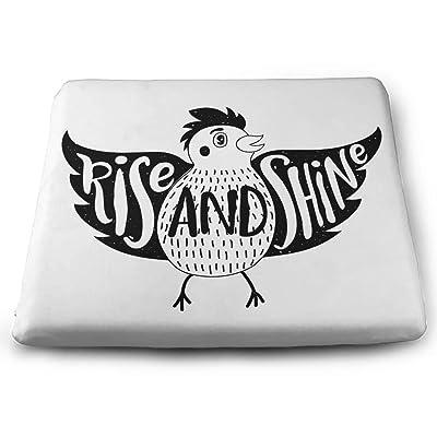 Tinmun Square Cushion, Bird Rise Shine Inspirational Motivational Large Pouf Floor Pillow Cushion for Home Decor Garden Party: Home & Kitchen