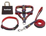 (DauStage) ハーネス リード 首輪 セット デニム 素材 選べる 4色 4サイズ 小型 中型 大型 犬用 トートバッグ付き (S, レッド)