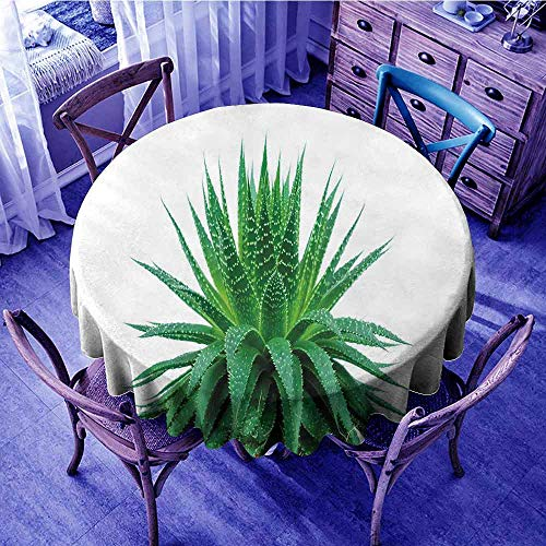ScottDecor Plant Wrinkle Free Tablecloths Medicinal Aloe Vera with Vibrant Colors Indigenous Species Alternative Natural Remedy Outdoors Round Tablecloth Fern Green Diameter 70