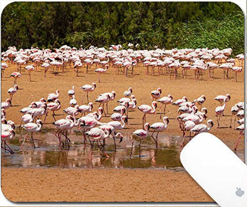 Lagoon Gravel (Luxlady Gaming Mousepad 9.25in X 7.25in IMAGE: 24746473 Flamingos near Walvis Bay Namibia)