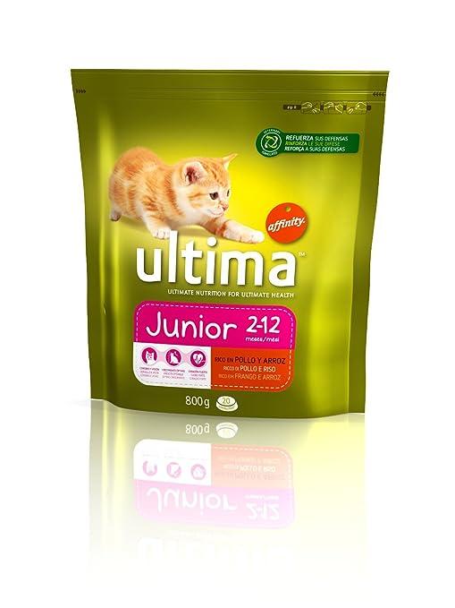 Comida Gato Ultima Junior 0, 8k: Amazon.es: Productos para mascotas