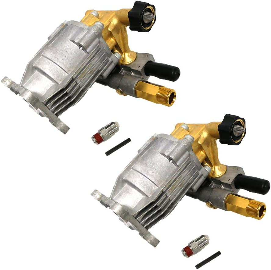 Ridgid 2 Pack of Genuine OEM Replacement Washer Pumps # 309515003-2PK
