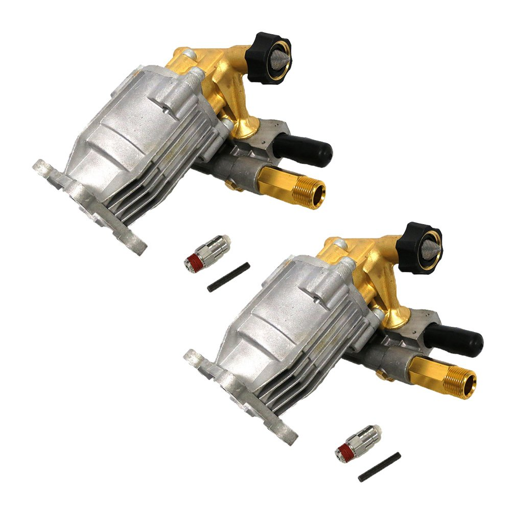 Ridgid Genuine OEM Replacement Washer Pumps # 309515003-2PK