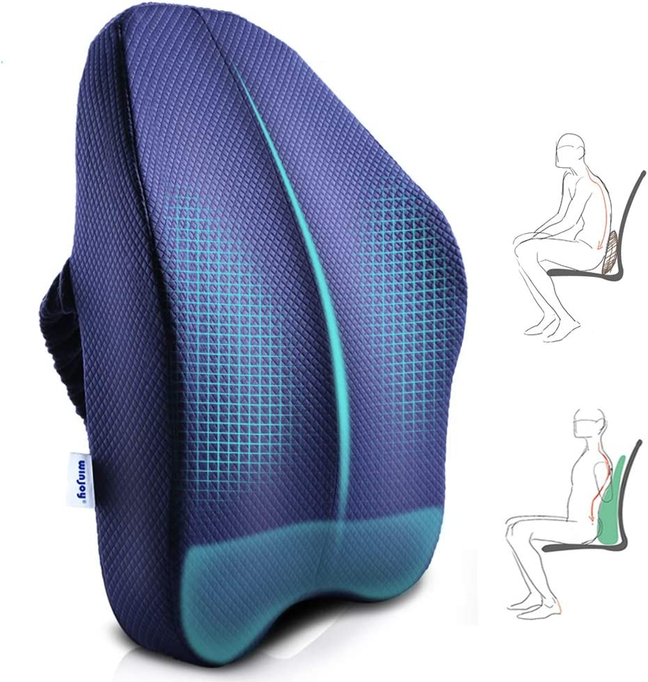 Winjoy Ergonomic Lumbar Support Pillow, 100% Pure Memory Foam Back Cushion with Breathable 3D Back Pillow Design for Lower Back Pain Relief,Durable Adjustable Straps for Chair/Recliner/Car Seat