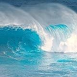 Wave Curl, Ocean Surf Beach Decor Print