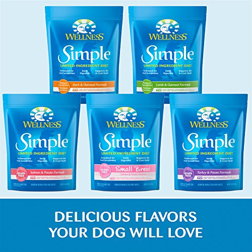 Wellness Simple Small Breed Limited Ingredient Dry Dog
