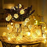 String Lights,Dream Wings 16.4ft / 5M 40LED Battery Operated Globe Fairy String Lights for Indoor and Outdoor Patio, Garden, Home, Gate, Yard, Party, Wedding, Christmas Tree Wall Decorative Warm White