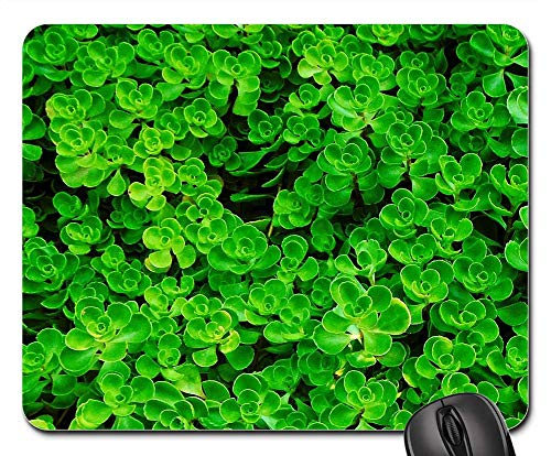 - Mouse Pad - Ground Cover Foliage Green Landscape Leaves Nature