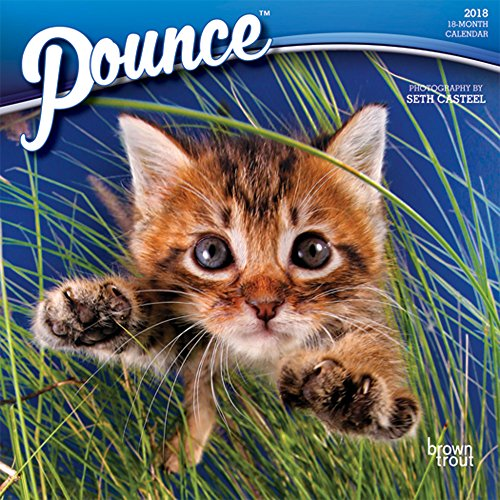 Pounce 2018 7 x 7 Inch Monthly Mini Wall Calendar, Cats (Pouncing Cat)