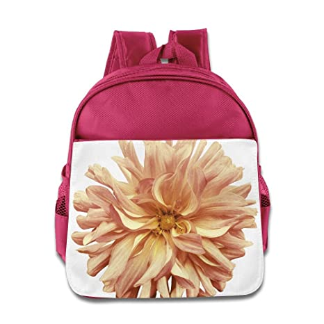 Amazon fyw funny autumn big flower yellow pink brown yellow fyw funny autumn big flower yellow pink brown yellow center on a white background isolated with mightylinksfo