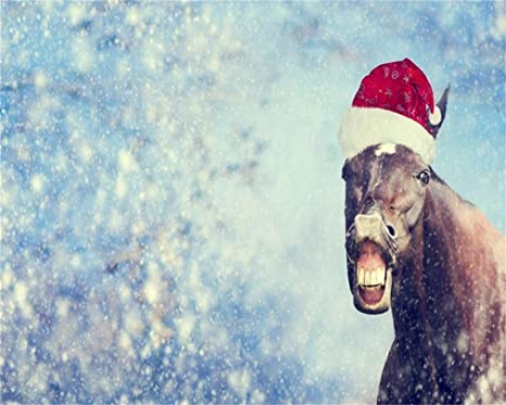 Aofoto 10x8ft Christmas Horse In Snow Photography Background Xmas Snowflake Backdrop Santa Hat Kid Baby Child Boy Girl Adult Portrait New Year Photo