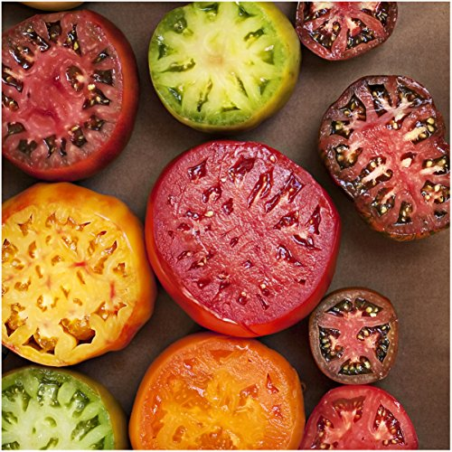 - Package of 70 Seeds, Rainbow Mixed Tomato (Black Krim, Black Sea Man, Yellow Brandywine, Tiny Tim, Ace 55 & More!) Non-GMO Seeds by Seed Needs
