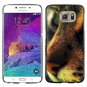 TopCaseStore / la caja del caucho duro de la cubierta de protección de la piel - Chausie Ocicat Savannah Serengeti Bengal - Samsung Galaxy S6 SM-G920