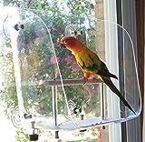 Your Pet Bird's Favorite Window Seat (Medium)
