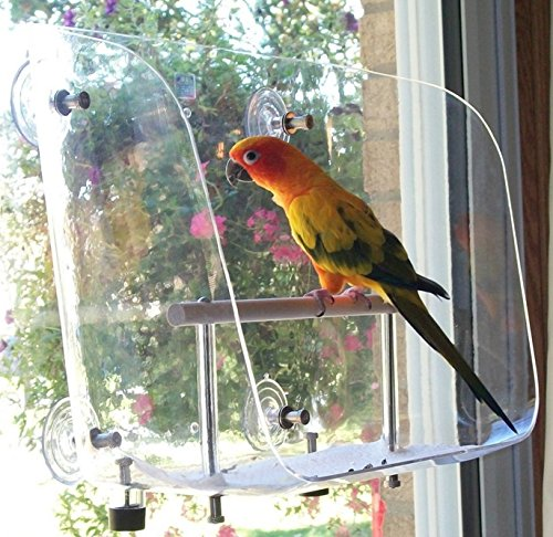 Avianweb Your Pet Bird's Favorite Window Seat (Medium) by Avianweb
