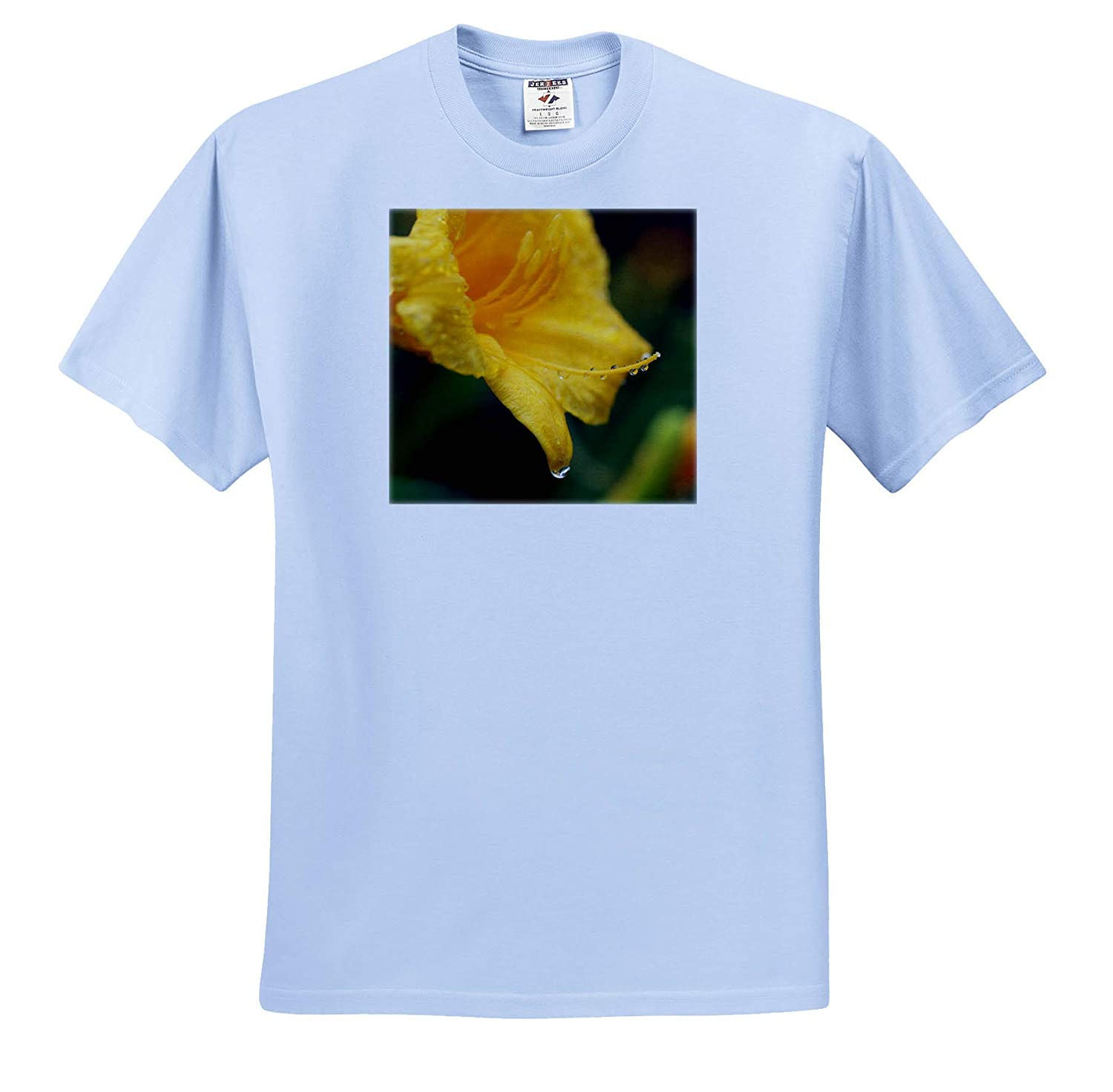 ts/_316748 Flowers Macro Photograph of a Yellow Daylily Immediately After The rain - Adult T-Shirt XL 3dRose Stamp City