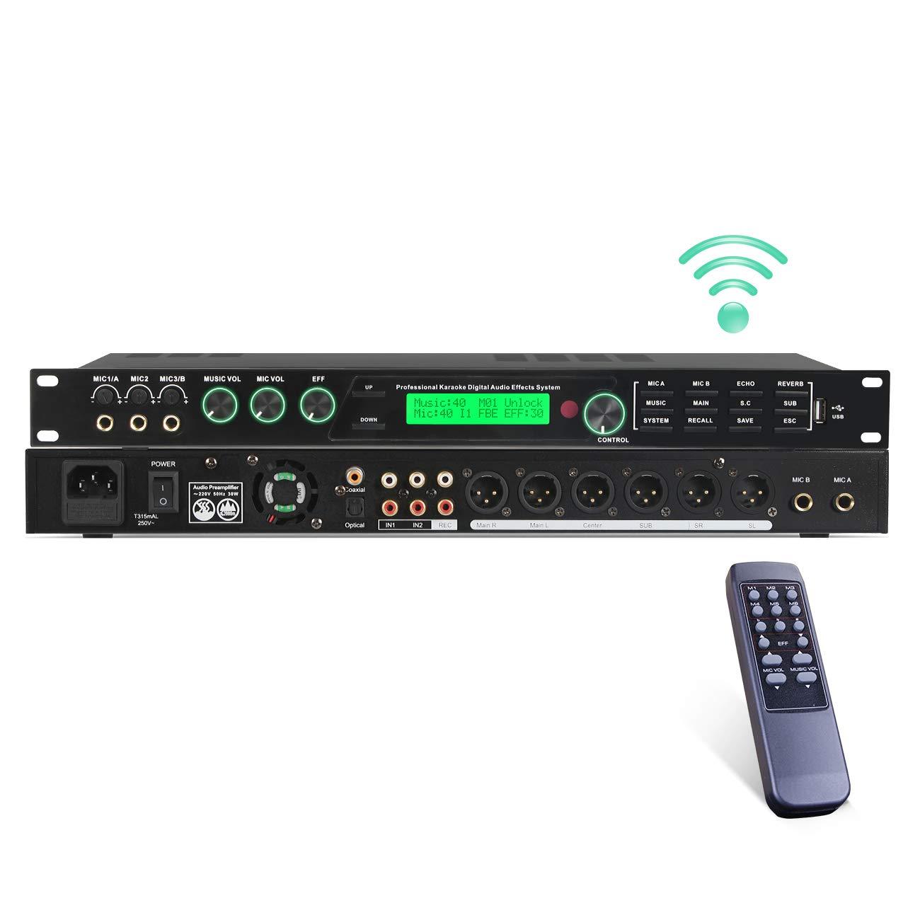 Depusheng REV50 High Performance Digital Reverb and Effects Processor for Music Equipment