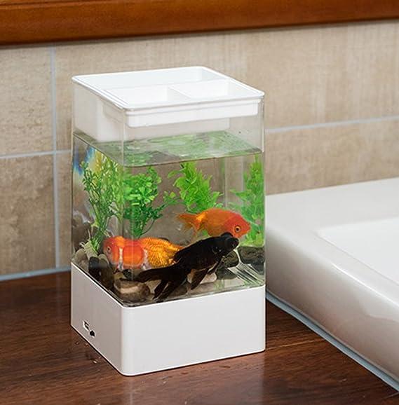 JIANGU pecera de autolimpieza, acuática, sin agua, mini pecera, tanque de plástico acrílico, acuario creativo: Amazon.es: Productos para mascotas