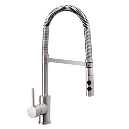 Wasserrhythm Pull Out And Pull Down Sprayer Spring Kitchen Faucet Brushed  Nickel With Escutcheon