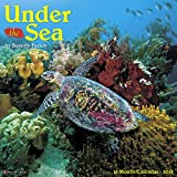 Under the Sea 2018 Wall Calendar