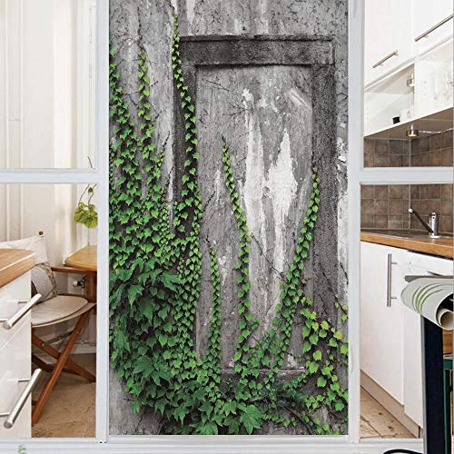 Decorative Window Film,No Glue Frosted Privacy Film,Stained Glass Door Film,Ivy on Wall with Aged Antique Empty Picture Frame as Window Creative Art,for Home & Office,23.6In. by 59In Green Charcoal