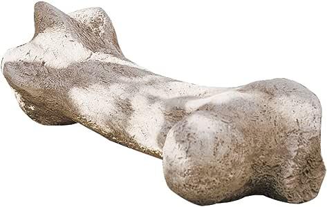 Design Toscano Gigantic Dinosaur Bone Sculpture