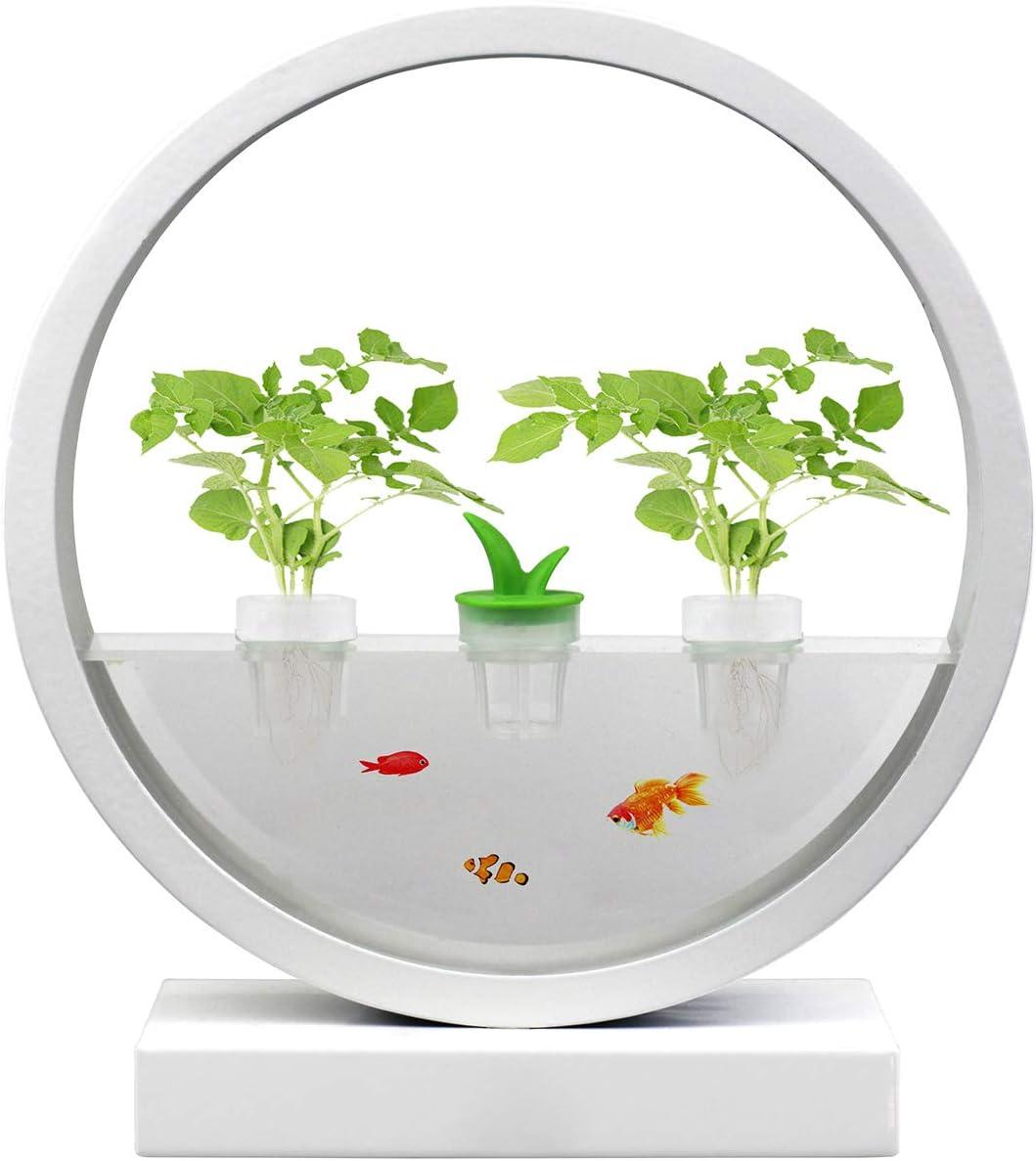 VegeBox Hydroponics Growing System with LED Indoor Garden Light, Indoor Herb Garden, Automatic Garden Kit, Home DIY Decoration (White)