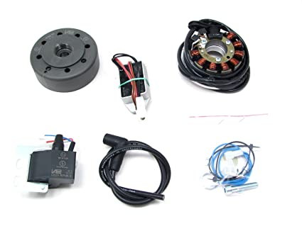 Amazon Powerdynamo Mzb Ignition Dc System Stator Kawasaki Kx. Powerdynamo Mzb Ignition Dc System Stator Kawasaki Kx 500 Kdx 250 110mm. Wiring. Kx 500 2 Stroke Stator Wiring Diagram At Scoala.co
