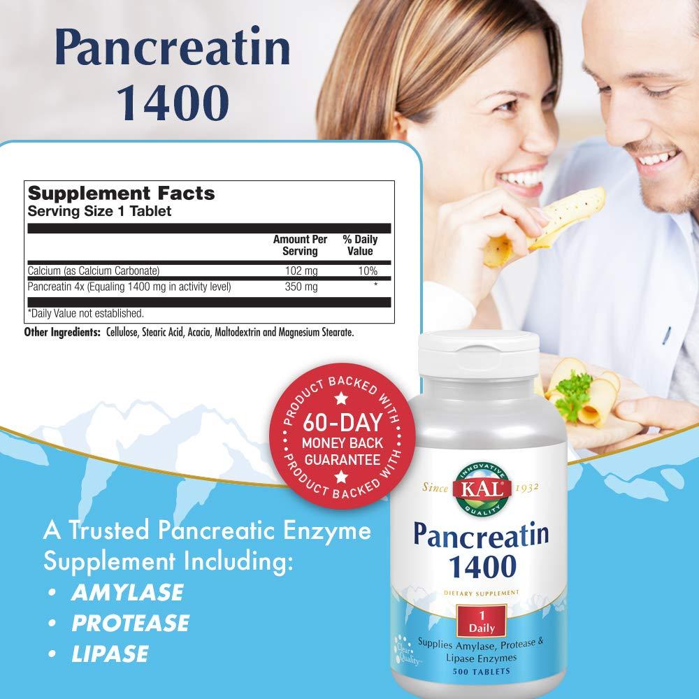 Amazon.com: Pancreatin 1400 mg – 500 – Tablet: Health ...