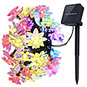 #LightningDeal 54% claimed: Ecandy Outdoor Solar Powered String Lights 19.5ft
