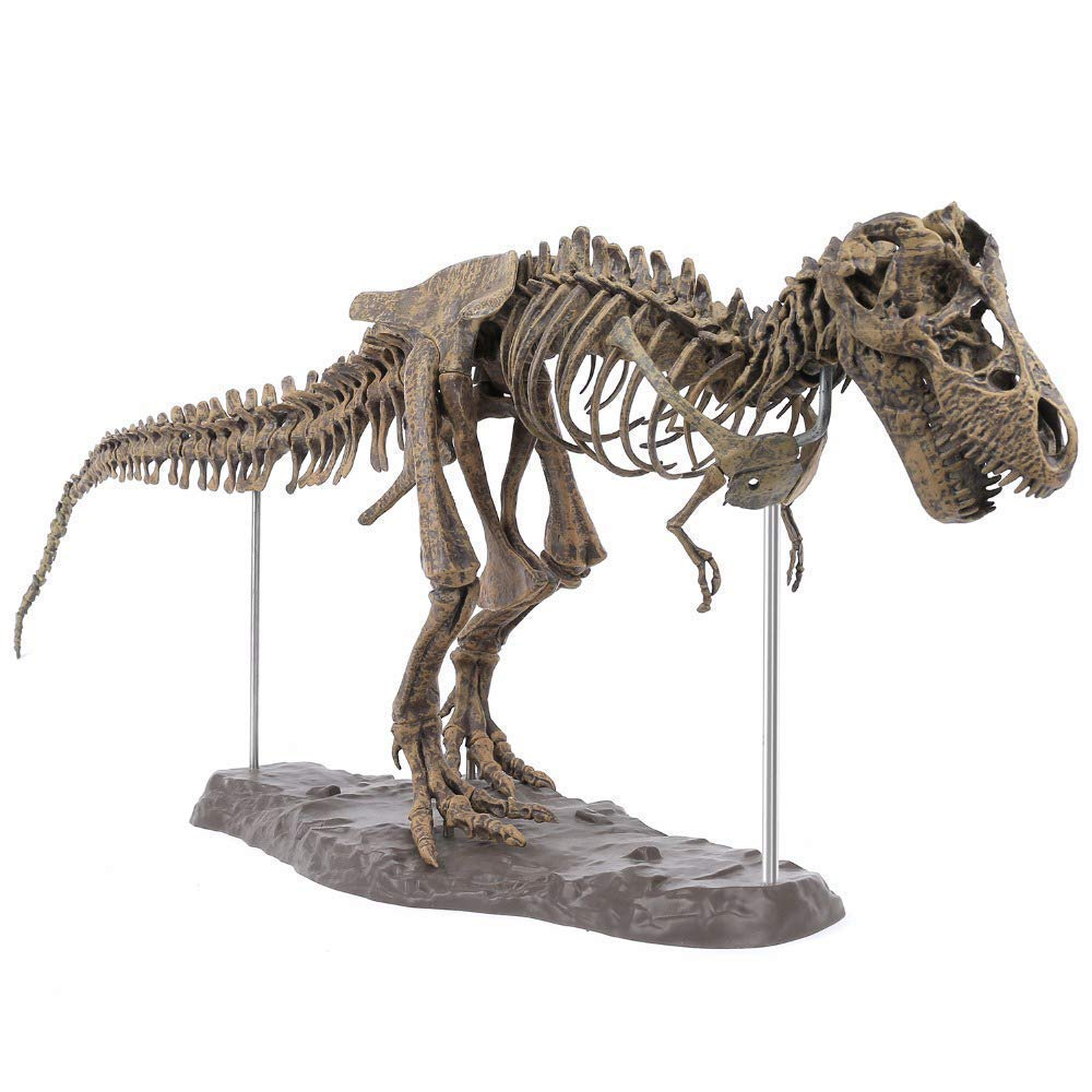 Hercugifts-DS 3D T-Rex Dinosaur Skeleton Model Puzzles in Big Size Soft Non-Toxic Plastic Material Educational Toy Pre-School Teaching DIY Assemble Simulation Toys for Children Kids Birthday Gifts
