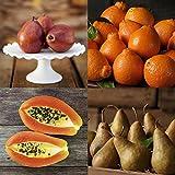 HarvestClub Light Medley - 3 mo - The Fruit Company