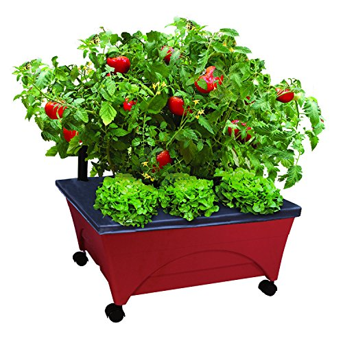 Emsco Group 2350 Bountiful Harvest Raised Bed Improved Aeration - Mobile Unit with Casters Self Watering Grow Box, Terracotta