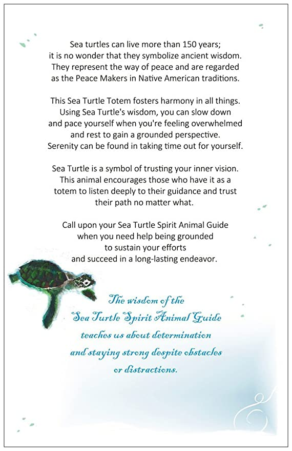 Native American Turtle Symbolism Gallery Meaning Of This Symbol