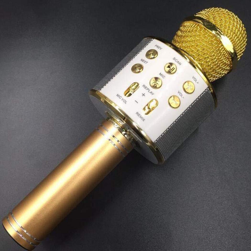Wifi mic