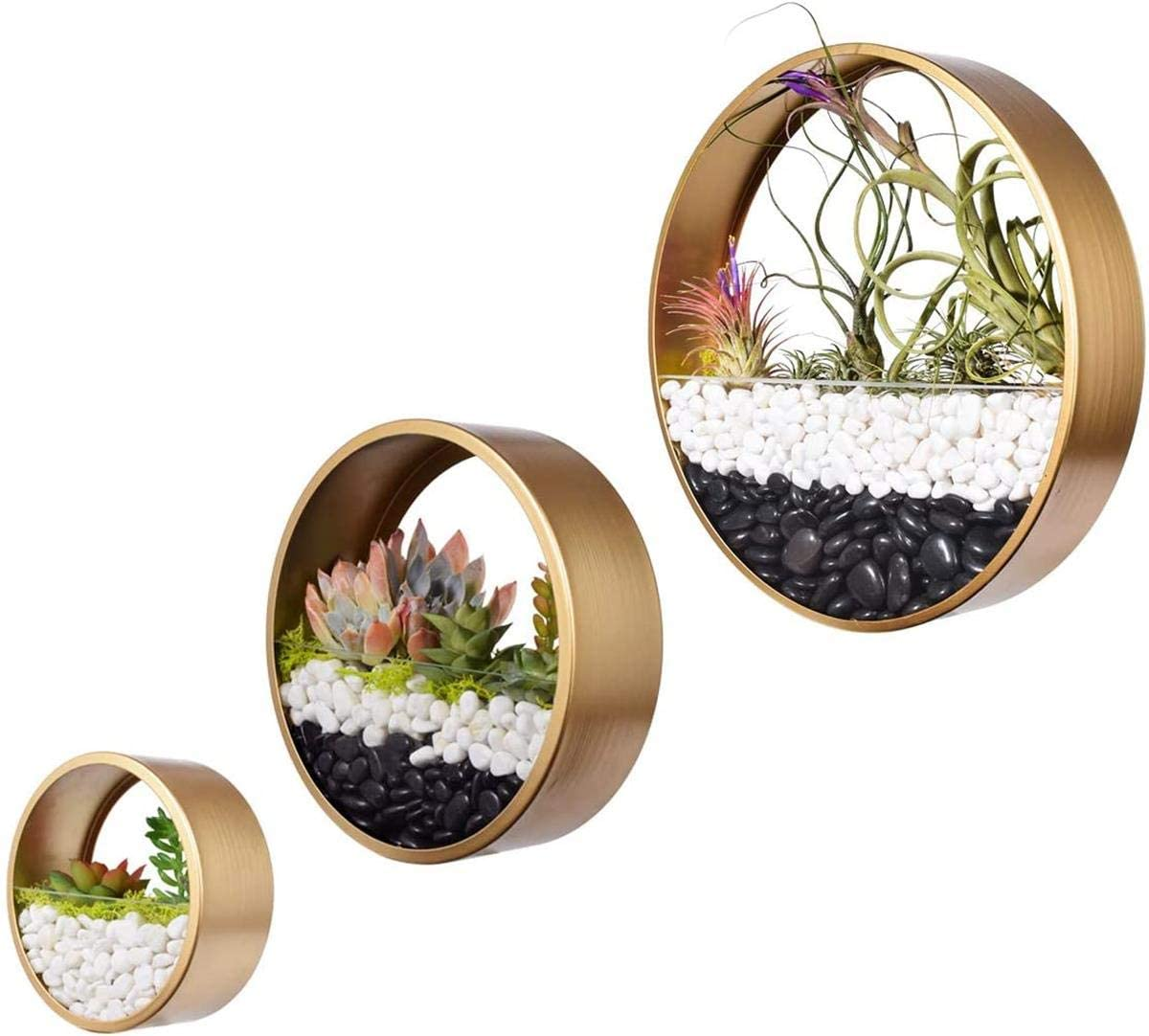 Ecosides Hanging Glass Globe Terrarium with Faux Succulents Glass Hanging Planter Terrarium Kit for Home Decoration