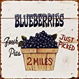 Cheap Barnyard Designs Fresh Picked Blueberries Retro Vintage Tin Bar Sign Country Home Decor 11″ x 11″