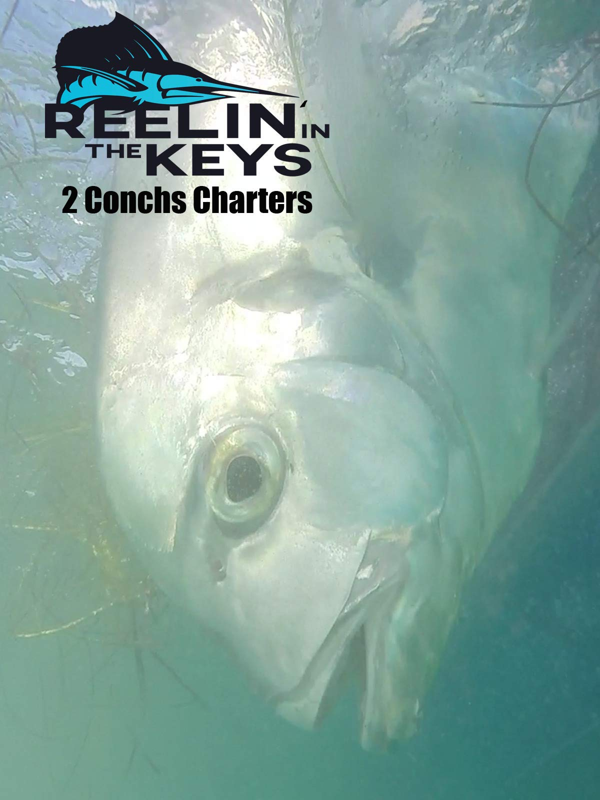 Reelin' In The Keys - Two Conchs Charters on Amazon Prime Video UK