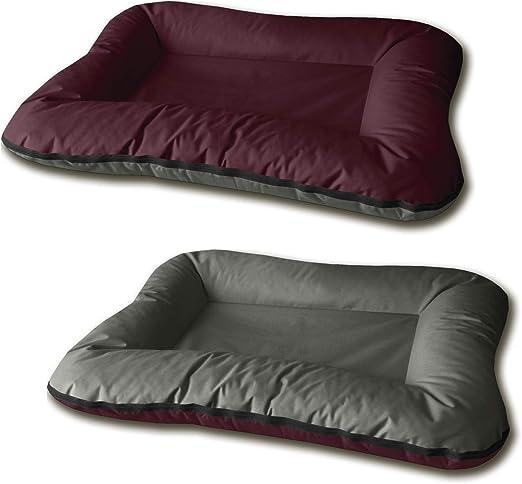 BedDog® 2 en 1 Vera Cereza/Gris XXXL Aprox. 135x120cm colchón para ...