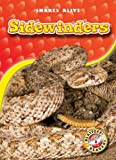 Sidewinders, Colleen Sexton, 160014456X